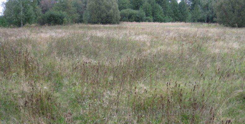 Более 100 переселенцев получат свидетельство о праве на получение земельного участка в 47 км от Киева