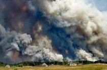 В Луганской области горит лес, пять человек погибло